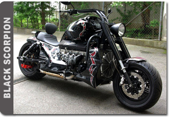 Harley Street 500 >> Black Scorpion